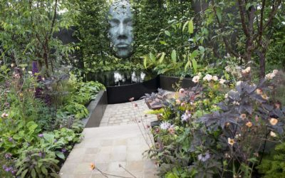 Our mindfulness garden gains attention