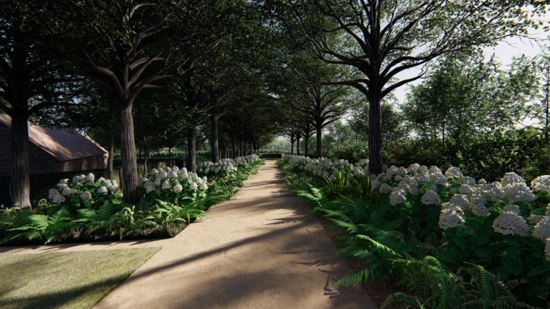woodland walk within large country garden design