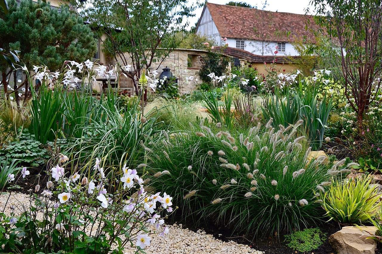 contemporary cottage garden design